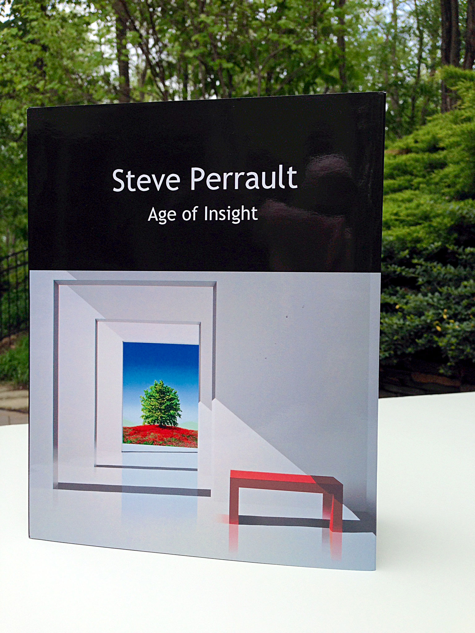 Steve Perrault, Age of Insight